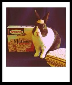 jewish easter bunny (1)